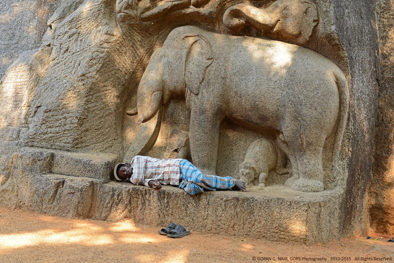 WAKE-UP MAHOUT, IT IS TIME TO GO FOR THE FESTIVAL...