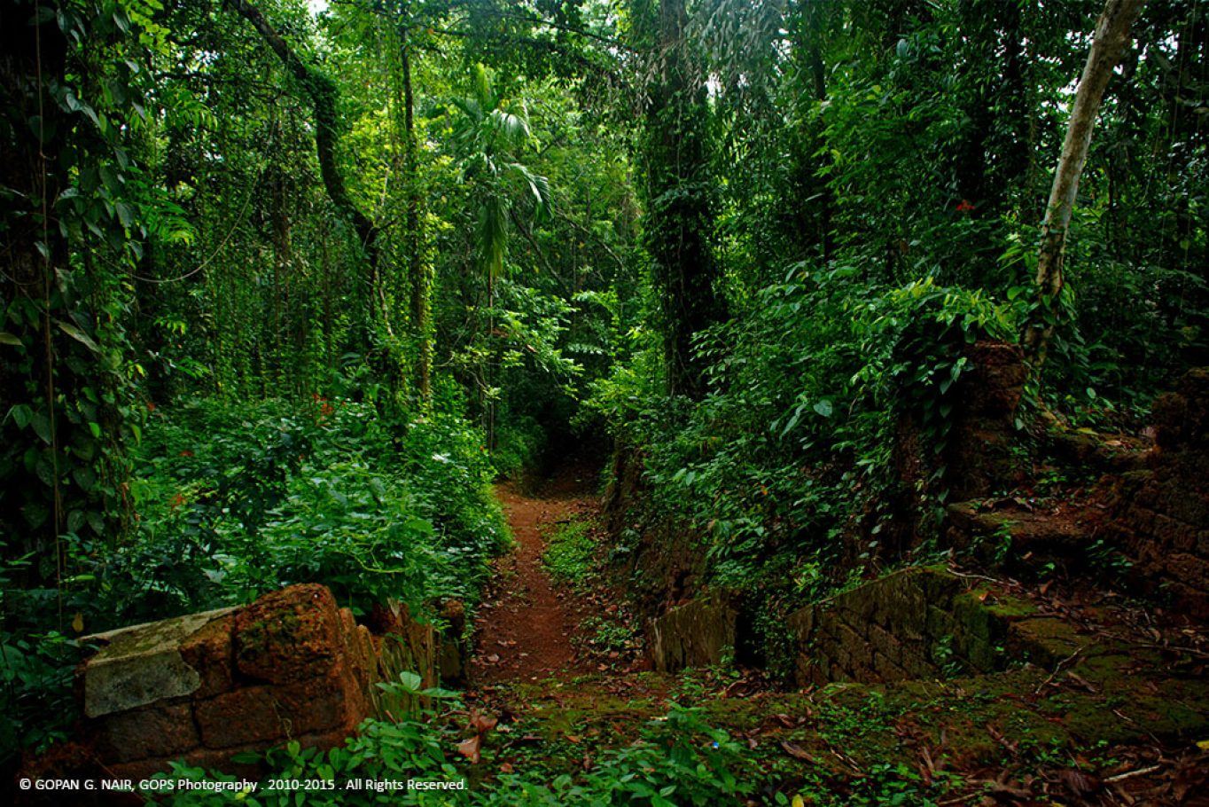 IDAVAZHI or a narrow passage from the villages of Kerala