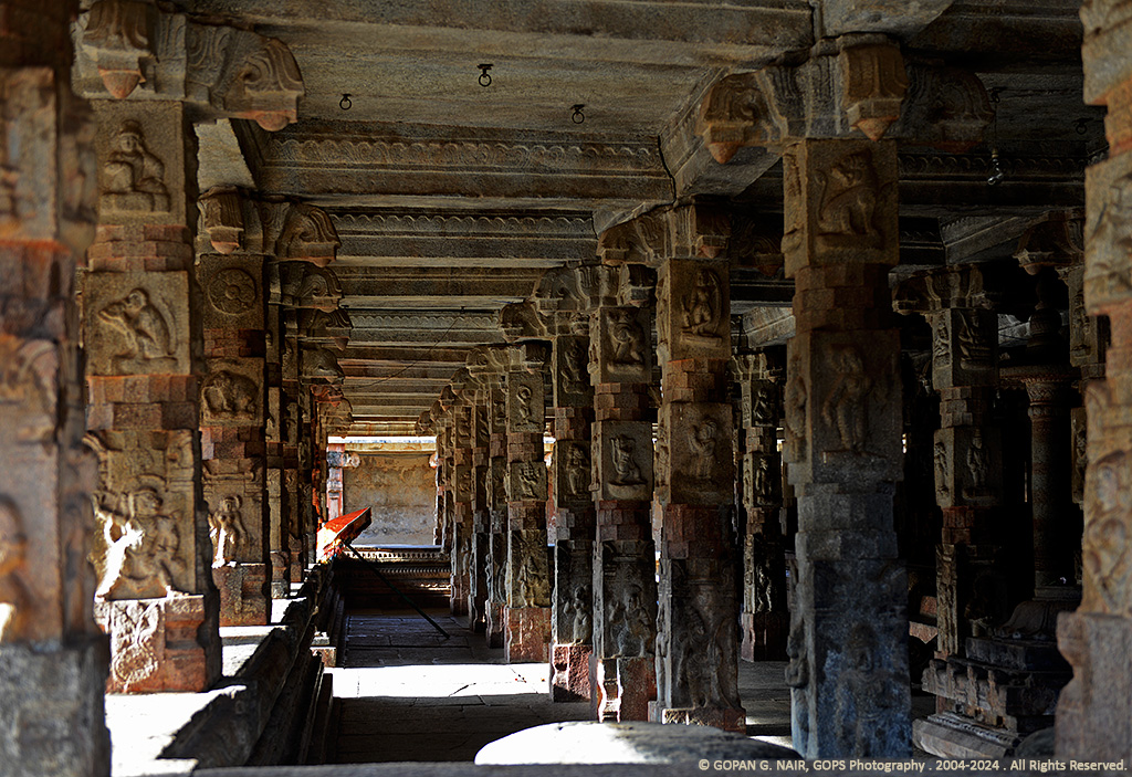 EXQUISITELY CARVED PILLARS IN THE FRONT MANDAP OF BHOGA NANDEESHWARA TEMPLE, KARNATAKA