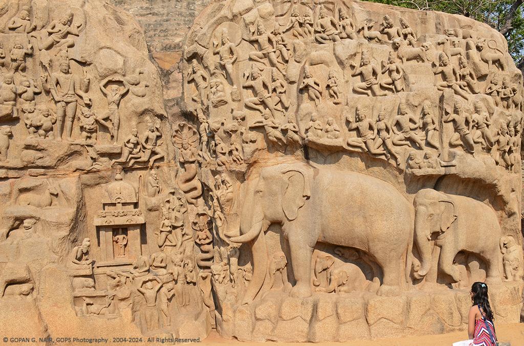 elephantmaha2_1024