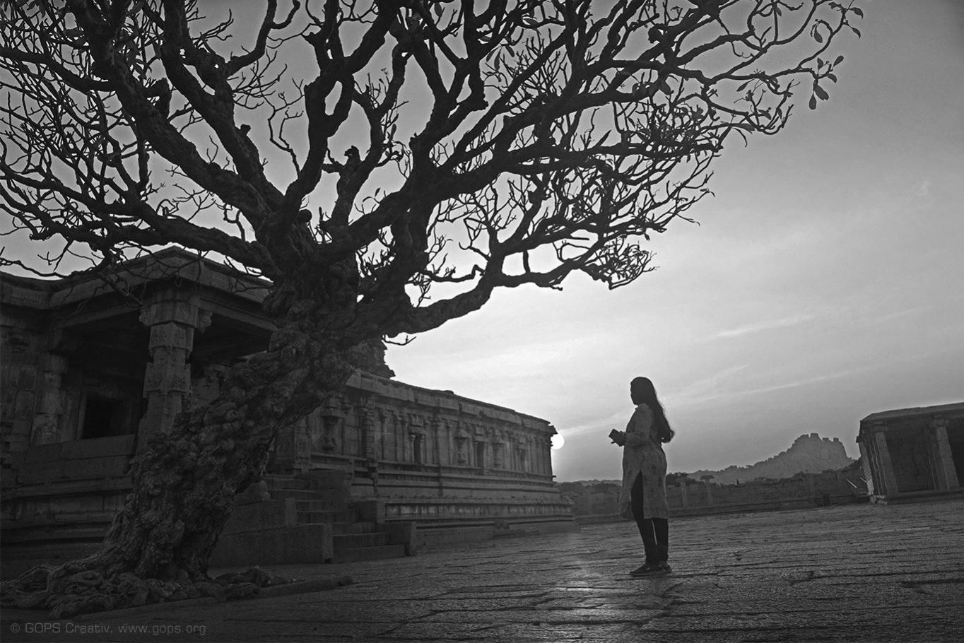 THE TREE OF LIFE, HAMPI